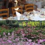 De leukste thee- en pluktuinen van Utrecht