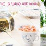 De leukste thee- en pluktuinen van Noord-Holland