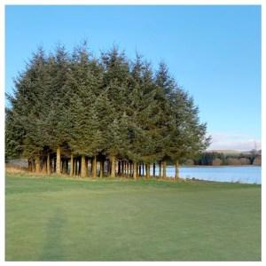 golfbaan piperdam