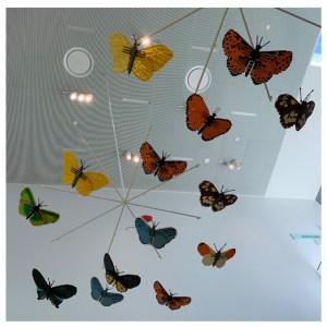 vlinders legohouse
