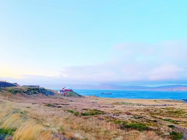 Uitzicht IJsland