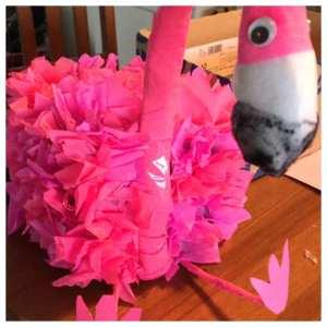 surprise flamingo