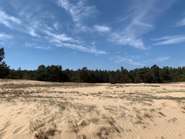 kootwijk zandverstuiving