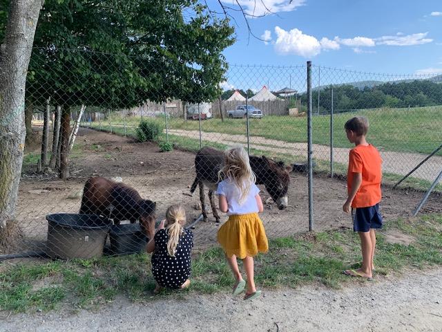 ezels western park boskovice