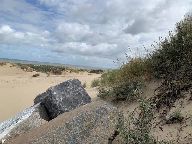 strand scheve horizon