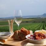 Wijnhuizen bezoeken in Zuid-Moravië, Tsjechië