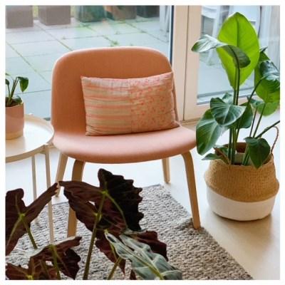 Muuto visu lounge stoel gestoffeerd roze