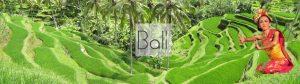 Bali reisinfo
