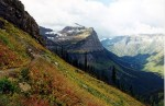 glaciern national park mountain meadow