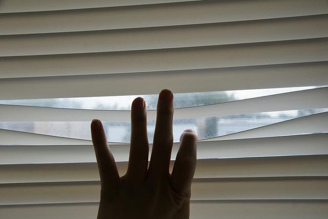 peeking-through-blinds-romana-klee