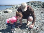 toddler and father looking at rocks on maine coast