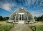 greenhouse and Kew gardens in London