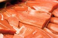 cuts fileted salmon