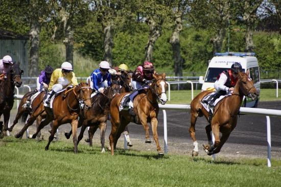4eme course - Hippodrome Chatillon sur Chalaronne