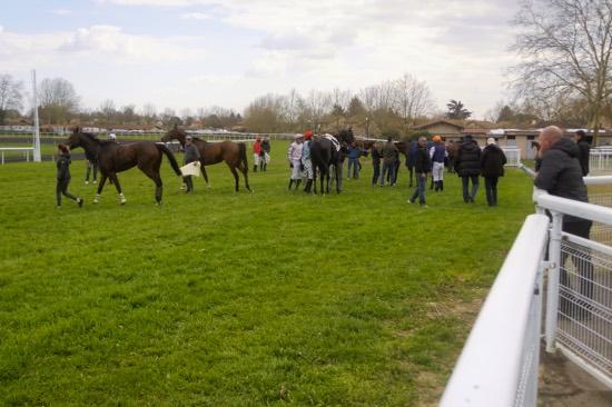 Hippodrome Chatillon sur Chalaronne - course 25/03/2019 - Photo 13