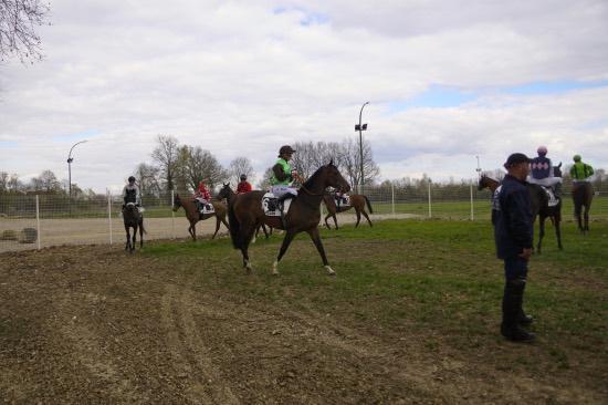 Hippodrome Chatillon sur Chalaronne - course 25/03/2019 - Photo 20