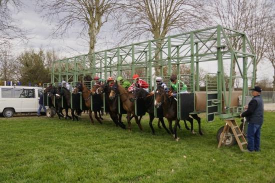 Hippodrome Chatillon sur Chalaronne - course 25/03/2019 - Photo 25