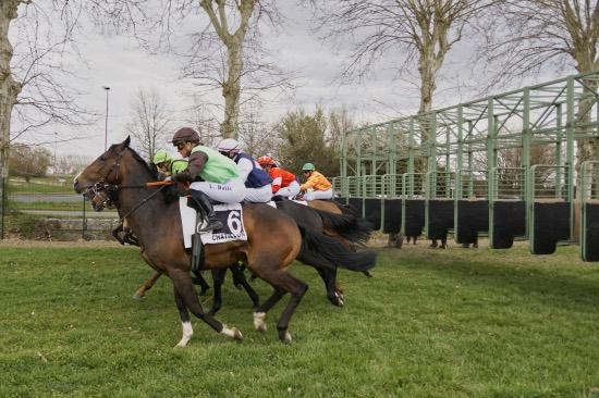 Hippodrome Chatillon sur Chalaronne - course 25/03/2019 - Photo 28