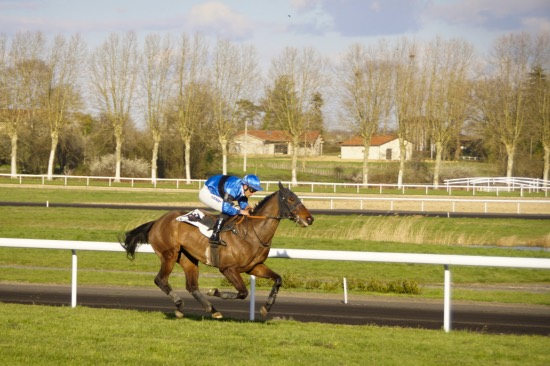 Hippodrome Chatillon sur Chalaronne - course 25/03/2019 - Photo 53