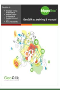 manual GeoQlik