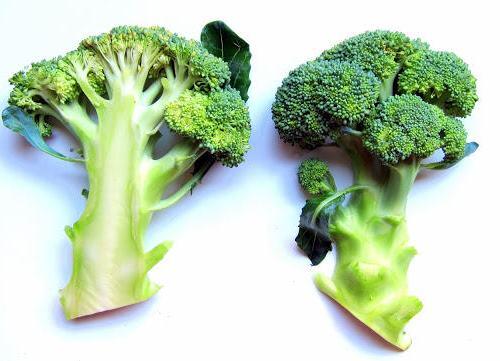 Pressure Cooker Health Benefits