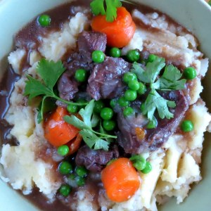 Tender Pressure Cooked Spiced Beef Stew & Meat Tips
