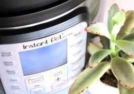 Instant Pot Mini