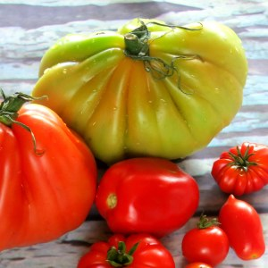 Can Pressure Cooking Tomatoes and other Foods Reduce Pesticide Residue?!?