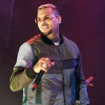 Chris Brown's Legal Defense Against Monkey Charges Revealed