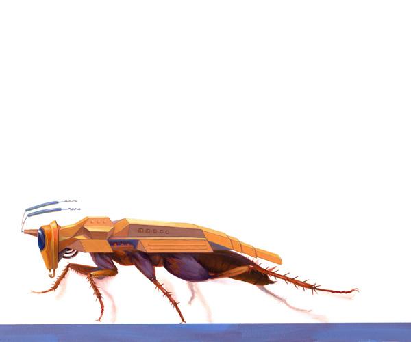 hughescockroachweb