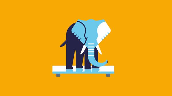 Elephant_F_Almasty