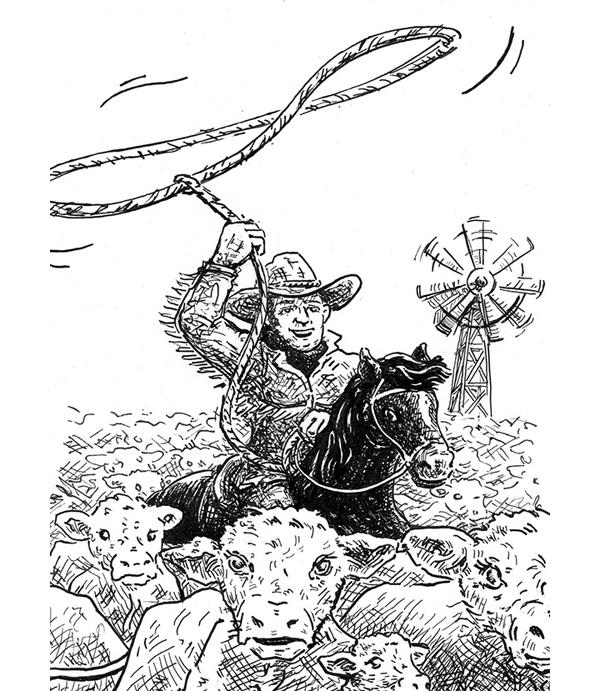 cowboy-600-3
