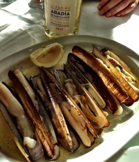 Galicia's razor clams