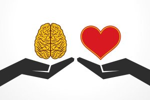 hands holding brain and heart