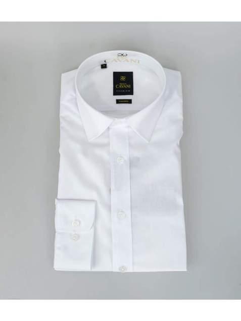 Cavani Mens Easy Iron Slim Fit White Shirt - Shirts
