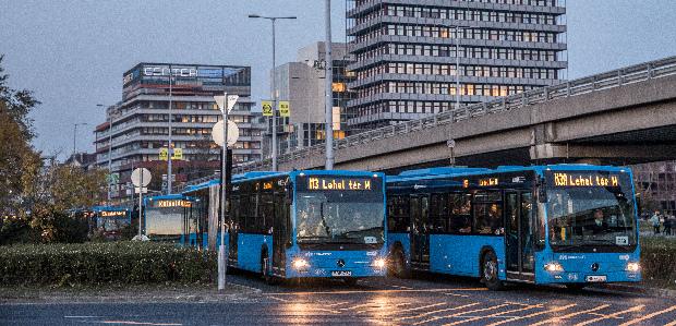 Késsel és viperával támadta meg egymást két magyar buszsofőr
