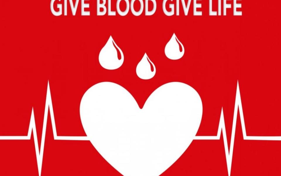 HIRNODA BLOOD DONATION (1)