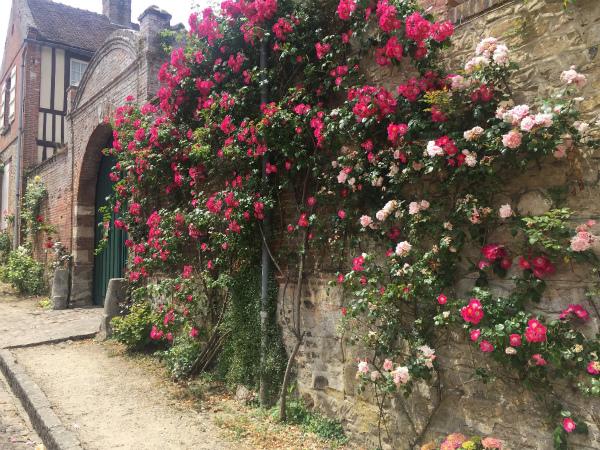 フランスのバラの村、ジェルブロワ