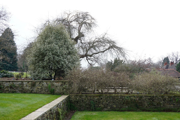 イギリス、ウィズリー・ガーデンを訪れる[その2]