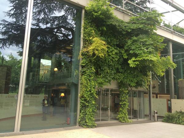 パリ、カルティエ現代美術財団の庭