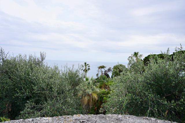 地中海の庭、ハンブリー植物園の風景 [2]