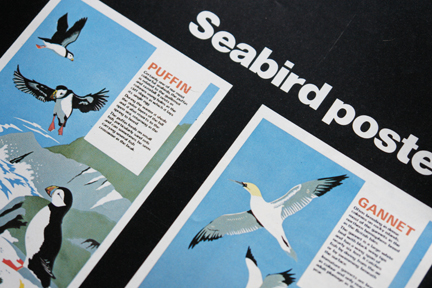 posters of sea birds from a vintage 1970s RSPB magazine