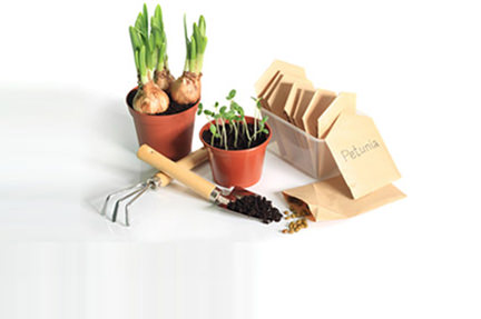 seeds in brown envelopes and seedlings and bulbs in plant pots