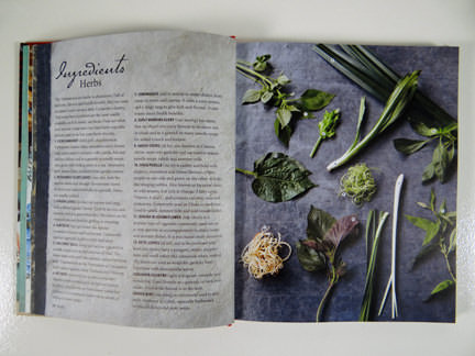 "herb photo from ""My Vietnamese Kitchen"" cookery book"