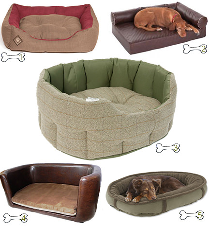 selection of 5 large dog beds