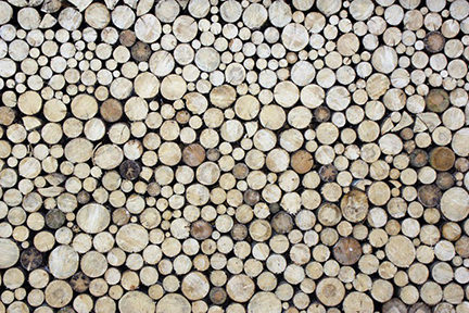 log patterned wallpaper