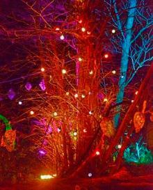 grotto 23 _DSC5033