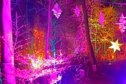 grotto 7 _DSC5056
