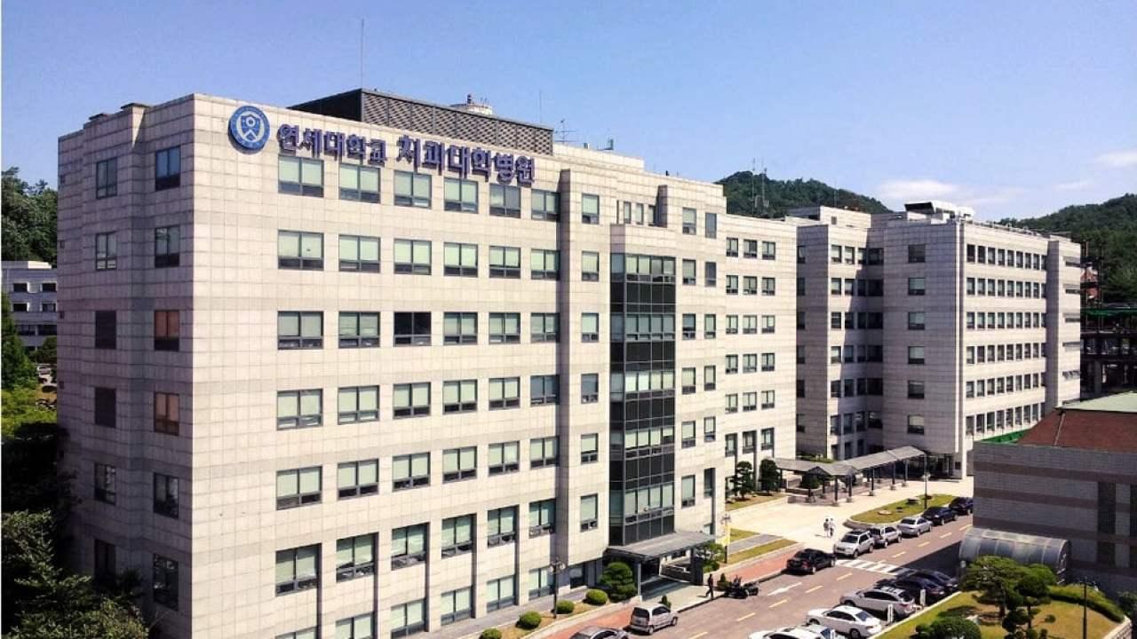 جامعة يونسي كلية طب الأسنان كوريا الجنوبية Hisour والفن
