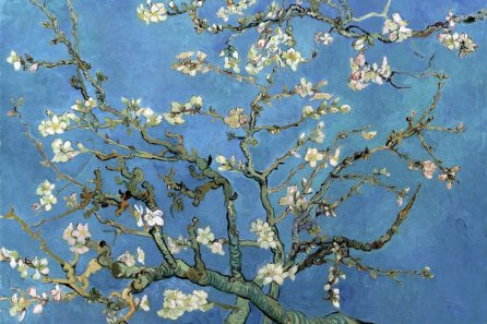 Van Gogh & Oriental art, Inspiration from Japan, Van Gogh Museum